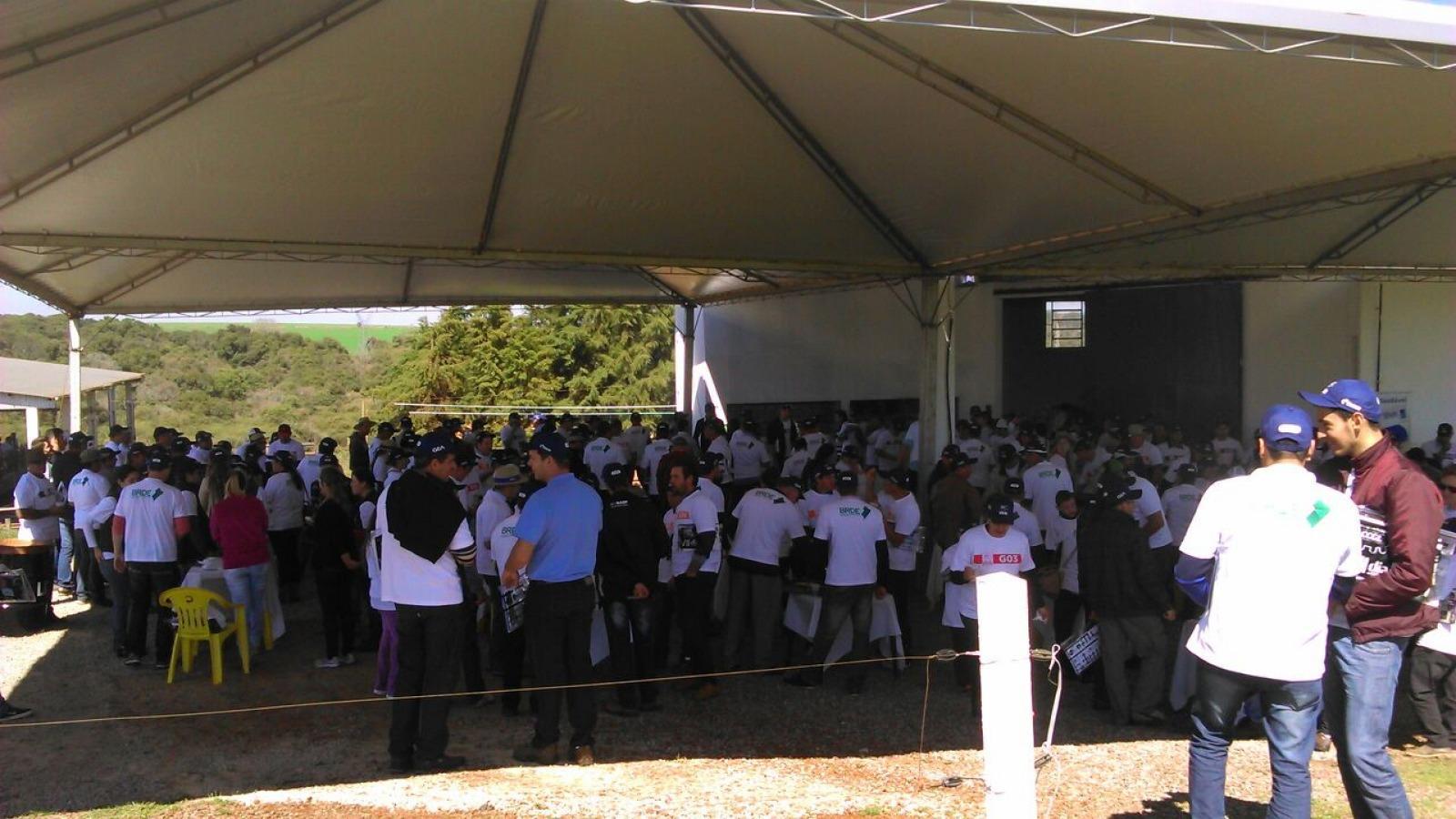 Cliente Saúde no Dia de Campo da CCGL
